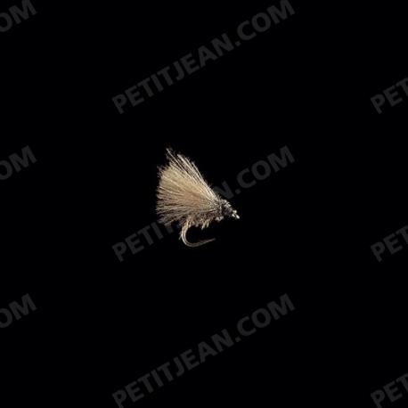Caddisflies CDC MP64