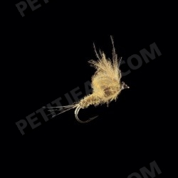 MayFlies CDC MP43
