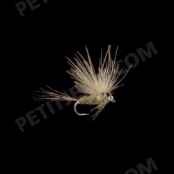 MayFlies CDC MP11